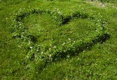trawy serce Zdjęcie Royalty Free