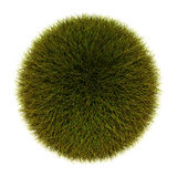 Trawy sfera zdjęcia stock