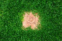Trawy tekstura z róża kamieniem Zdjęcia Royalty Free