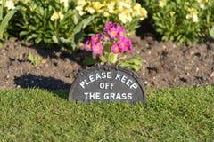 trawy utrzymanie daleko zadawala Zdjęcie Royalty Free