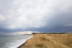 Trawy wybrzeże Obrazy Royalty Free