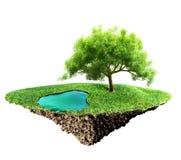 Trawy wyspa ilustracji