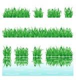 trawy zieleń ilustracji