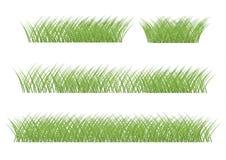 trawy zieleni ilustraci wektor grafiki trawy ilustracyjna tekstura tw?j ilustracja wektor