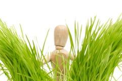 trawy zieleni mannequin drewniany zdjęcia stock