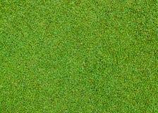 trawy zieleni wzór zdjęcie stock