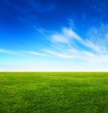 Trawy zielony pole i jaskrawy niebieskie niebo Zdjęcie Stock