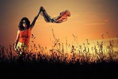 trawy zmierzchu widok Fotografia Stock