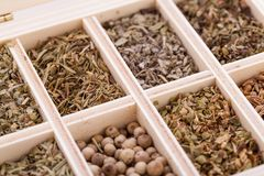Tray with assorted dried spices and herbs Stock Image