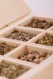 Tray with assorted dried spices and herbs Stock Photography