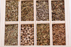 Tray with assorted dried spices and herbs. Overhead view of a tray with individual divisions displaying assorted dried spices and herbs for use in a kitchen to Royalty Free Stock Photo