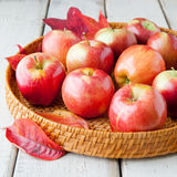 Tray with autumn apples on rustic wood table Royalty Free Stock Photos
