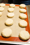 Tray of biscuits ready for the oven Stock Photography