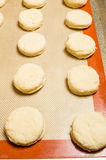 Tray of biscuits ready for the oven Royalty Free Stock Photo