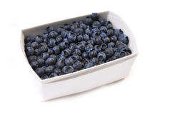 Tray of blueberries Royalty Free Stock Images