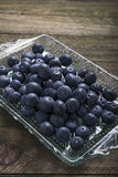 Tray of blueberries Stock Images