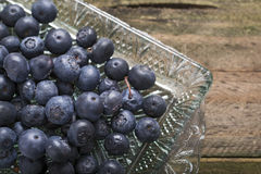 Tray of blueberries Royalty Free Stock Photos