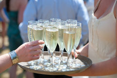 Tray of Champagne - Tempting Royalty Free Stock Photos
