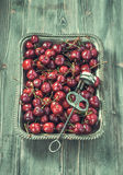 Tray of cherries with stone remover Royalty Free Stock Photography