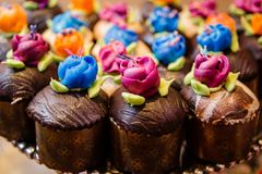 Brightly Frosted cupcakes, chocolate cake Royalty Free Stock Image