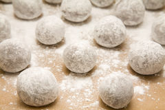 Tray of  chocolate dough balls with icing sugar du Royalty Free Stock Photo