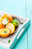 Tray with citrus fruits Stock Images