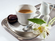 Tray coffee Stock Image