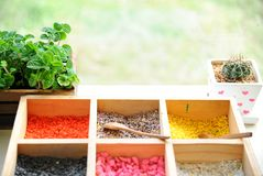 Tray of colorful grit for plant pot with cactus and papermint po Stock Photography