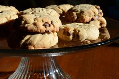Tray of Cookies Stock Photography