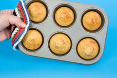 Tray of Corn Muffins Royalty Free Stock Photos