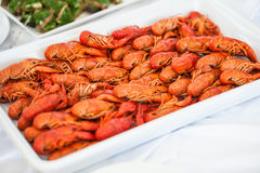 Tray of crayfish Stock Images