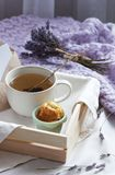 A tray with a cup of hot tea and cupcakes in bed with a knitted blanket. Herbal tea Hot drink Mood Love Message Breakfast in bed M. Orning Lifestyle royalty free stock photography