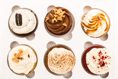 Tray of cupcakes Stock Photography