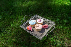 Tray of cupcakes standing on the lawn Royalty Free Stock Image
