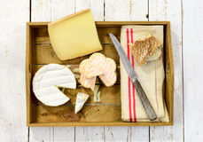 Tray different french cheeses Stock Photos