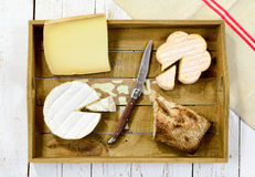 Tray different french cheeses with bread Royalty Free Stock Images