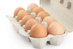 Tray of eggs Royalty Free Stock Photo