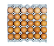 Tray of eggs. Eggs in paper tray on white background Royalty Free Stock Images