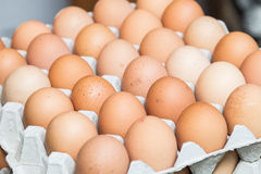 Tray of Eggs. On display at a market royalty free stock photography