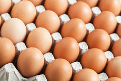 Tray of eggs in packaging. Tray of eggs in a carton packaging Royalty Free Stock Images
