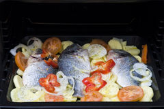 Tray of fish. Baking tray filled with whole fish and dressing Stock Photos