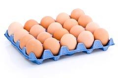 Tray of fresh eggs Royalty Free Stock Photo