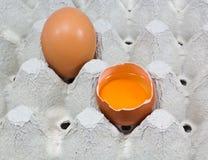Tray of fresh  free range organic eggs Stock Images