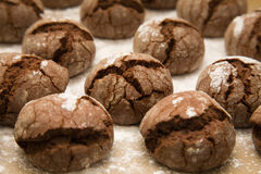 Tray of freshly made chocolate cookies Royalty Free Stock Images