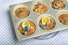 Tray of lemon blueberry muffins. Royalty Free Stock Images