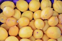 Tray of lemons Royalty Free Stock Photography