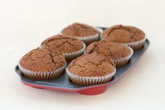 Tray Of Muffins Royalty Free Stock Photo