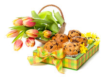 Tray of muffins and bunch of tulips Royalty Free Stock Photography