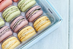 Tray of Pastel Macarons Stock Image