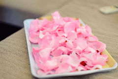 Tray with Petals Royalty Free Stock Photo